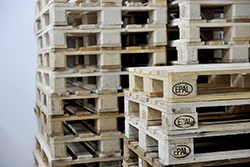 Tripping over objects like pallets is a common cause of warehouse accidents